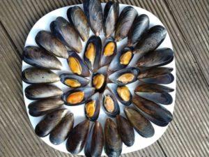 Мидии в голубых раковинах варено-мороженые